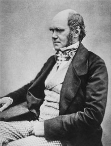 According to his son Francis, this portrait of Charles Darwin is by Henry Maull and John Fox, and was probability taken in 1854, shortly before the publication of the On the Origin of Species.