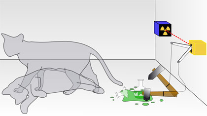 The 'Schrdinger cat paradox', one of the most famous thought experiments of the 20th century, involves a radioactive source and a detector linked to a vial of poison.